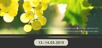 Traditionelle Weinverkostung