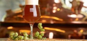 Unser Tipp für Bierliebhaber: ROTBIER