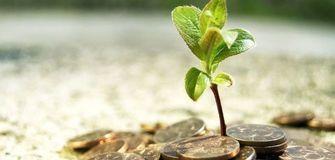 Wen unterstütze ich mit dem Raiffeisen Ethical Banking?