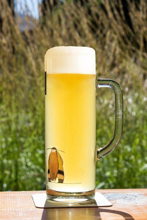 NUOVO! La birra Asia