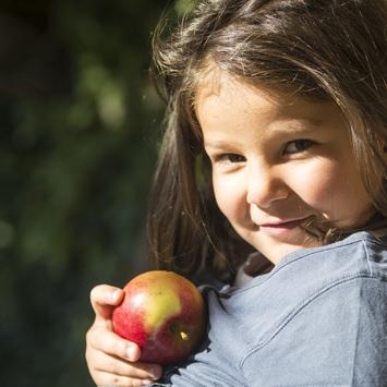 Bühler Hof Apfel
