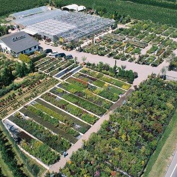 Giardineria Reider