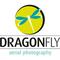 Dragonfly-servizio droni